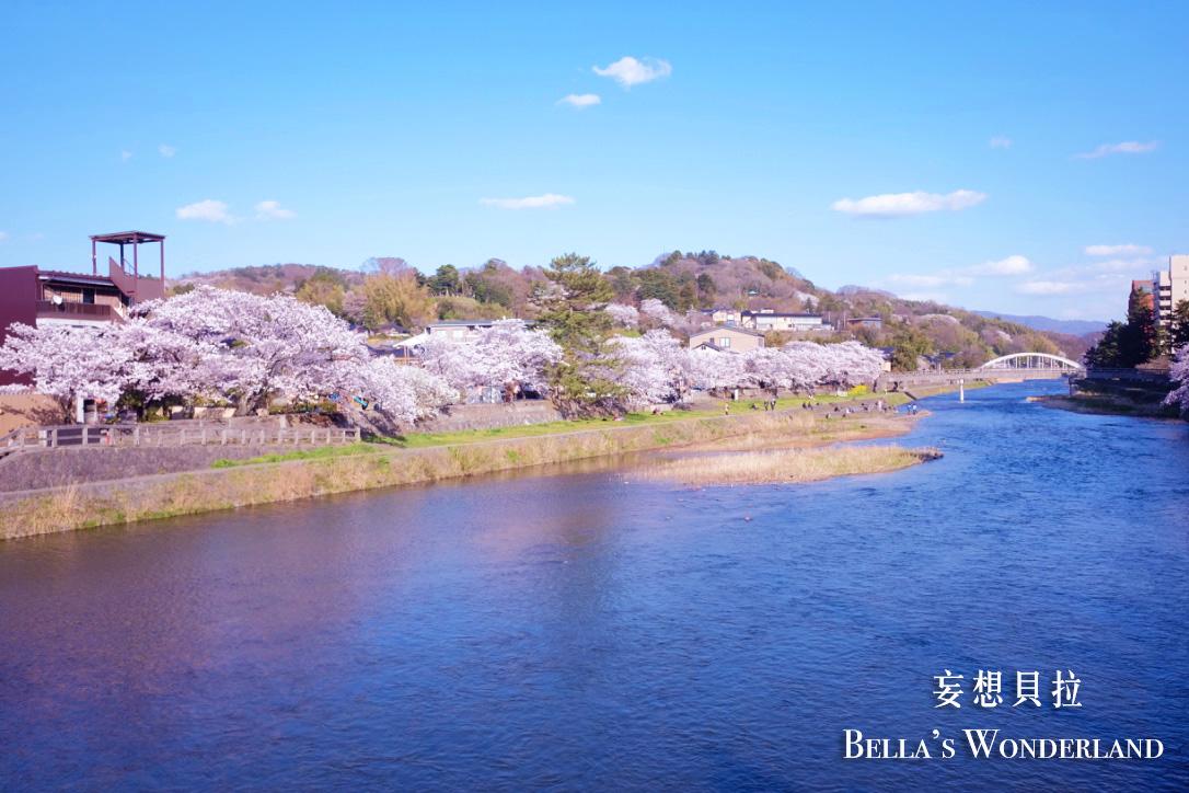 金澤景點 東茶屋街散策地圖 淺野川櫻花 櫻花季
