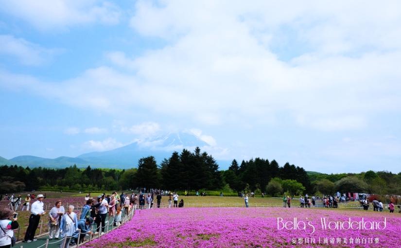 河口湖景點 芝櫻祭會場限定必買伴手禮 富士山與芝櫻