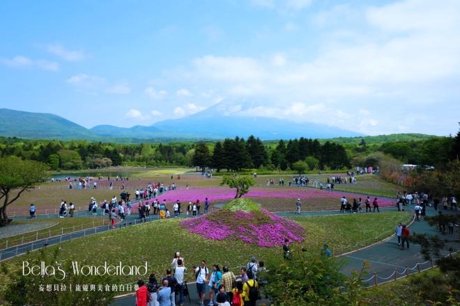 河口湖景點 芝櫻祭會場限定必買伴手禮 瞭望台景色