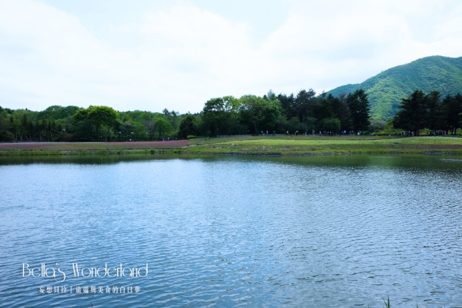 河口湖景點 芝櫻祭會場限定必買伴手禮 龍神池